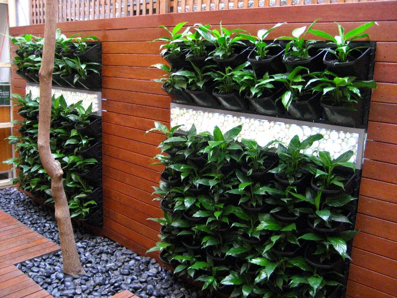 up agora trend vertical and garden green gardens coming an gardening